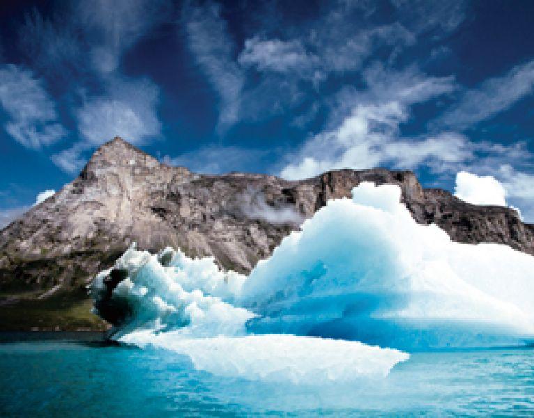 iceberg feniello