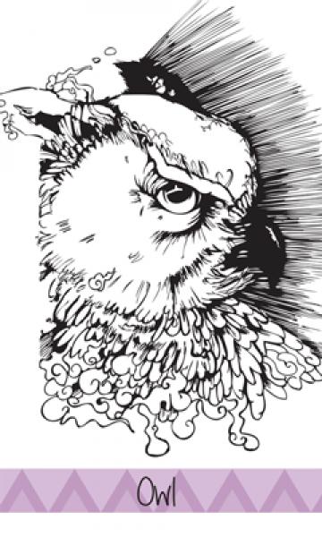 ortuso owl