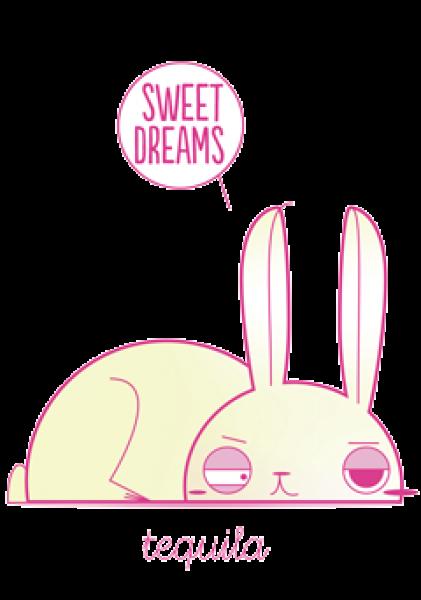 distaso coniglio
