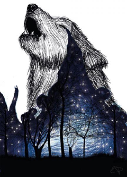 the night of full moon