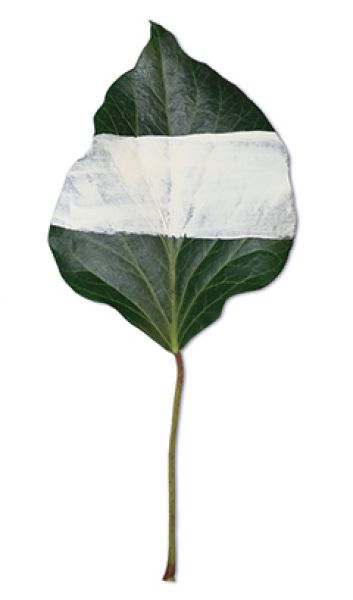 Susi Mauri 01